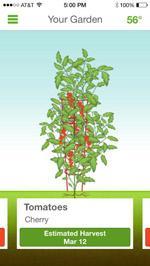 sproutit